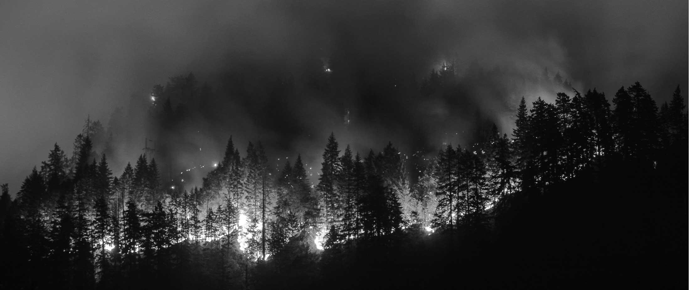Wildfire Preparedness & Cost-Share Program